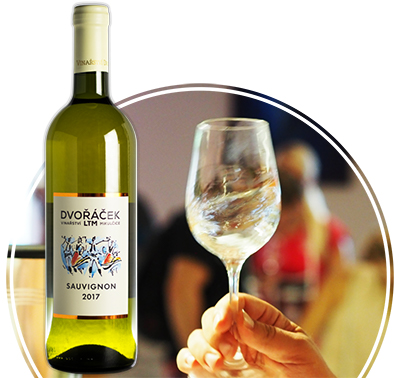 Bílá vína Dvořáček
